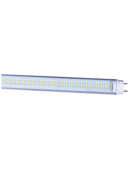 NÄVE LED-Leuchtröhre, 18 W, T8, 5000 K, neutralweiß, 1950 lm