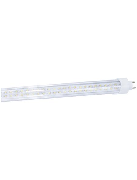 NÄVE LED-Leuchtröhre, 23 W, T8, 4000 K, neutralweiß, 2200 lm