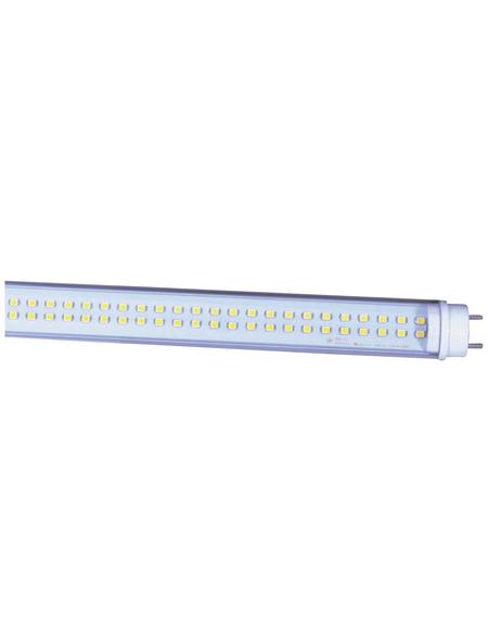 NÄVE LED-Leuchtröhre, 27 W, T8, 5000 K, neutralweiß, 3800 lm