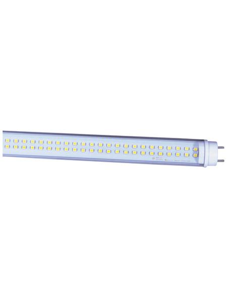 NÄVE LED-Leuchtröhre, 29 W, T8, 5000 K, neutralweiß, 3200 lm