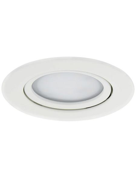 PAULMANN LED-Modul »Coin Slim«, inkl. Leuchtmittel in warmweiß