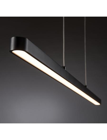PAULMANN LED-Pendelleuchte »Lento«, dimmbar, inkl. Leuchtmittel in warmweiß