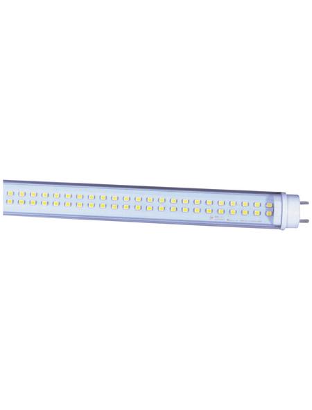 NÄVE LED-Röhre, 23 W, T8, 5700 K, 2400 lm