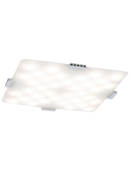 PAULMANN LED-Softpad »Atria«, inkl. Leuchtmittel in warmweiß