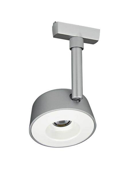 PAULMANN LED-Spot »URail«, dimmbar, inkl. Leuchtmittel in warmweiß