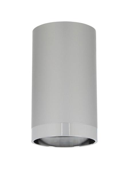 PAULMANN LED-Spot »URail« GU10, inkl. Leuchtmittel in warmweiß