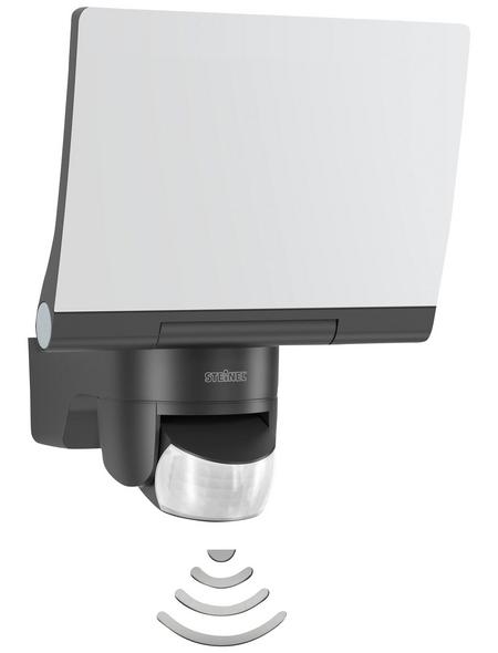 STEINEL LED-Strahler »XLED Home 2 XL«, 20 W, inkl. Bewegungsmelder