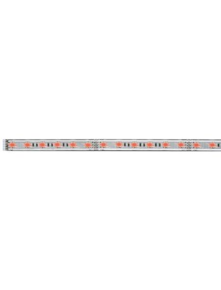 PAULMANN LED-Streifen, 100 cm, 420 lm, dimmbar