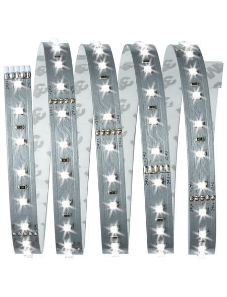 PAULMANN LED-Streifen, 150 cm, tageslichtweiß, 825 lm, dimmbar