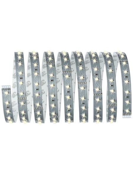PAULMANN LED-Streifen, 250 cm, warmweiß, 1375 lm, dimmbar
