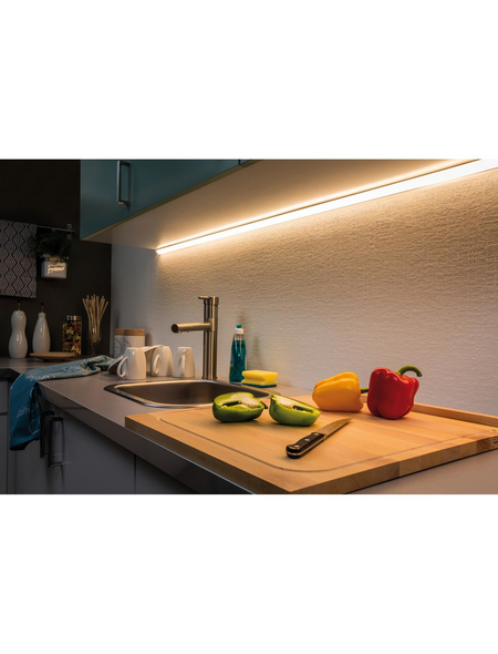 PAULMANN LED-Streifen, Länge: 100 cm, 550 lm
