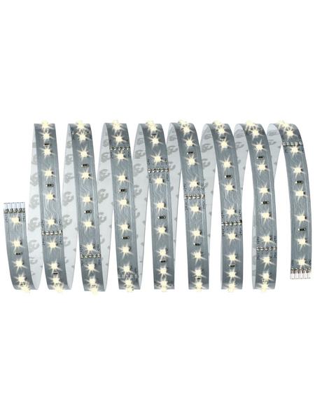 PAULMANN LED-Streifen, Länge: 250 cm, 1375 lm