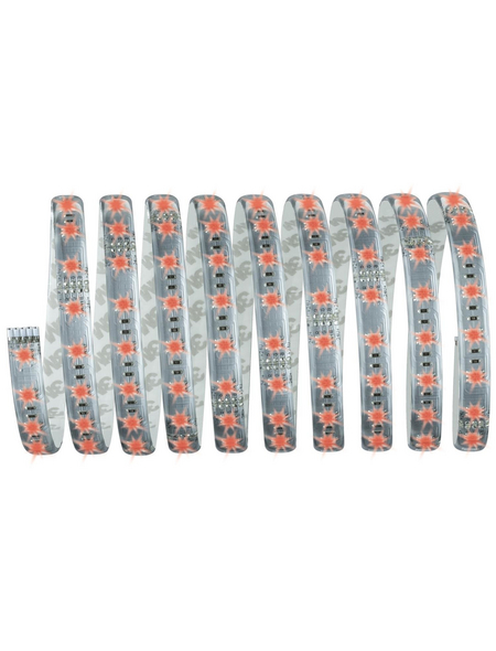 PAULMANN LED-Streifen, Länge: 300 cm, 1260 lm