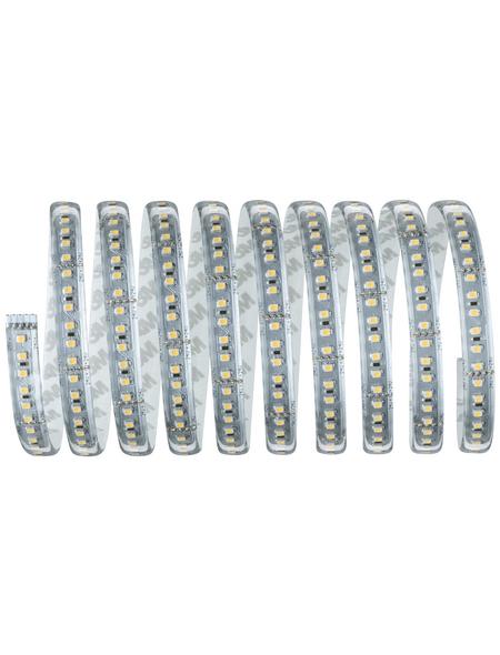 PAULMANN LED-Streifen »MaxLED«, 300 cm, warmweiß, 3300 lm, dimmbar