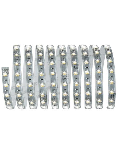 PAULMANN LED-Streifen »MaxLED«, Länge: 300 cm, 1650 lm