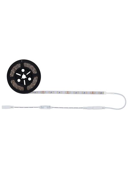 PAULMANN LED-Streifen »SimpLED«, Länge: 300 cm