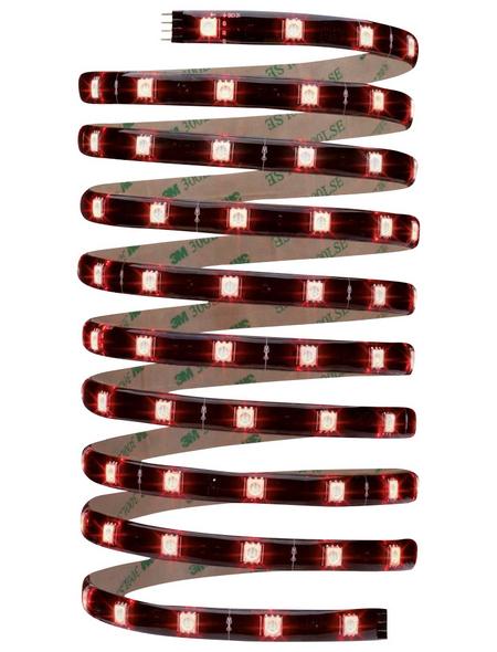 PAULMANN LED-Streifen »YourLED«, 300 cm, mehrfarbig, 550 lm, dimmbar