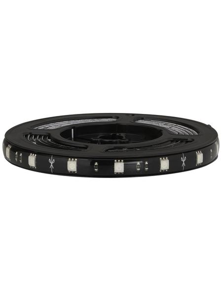 PAULMANN LED-Streifen »YourLED«, 300 cm, mehrfarbig, 840 lm