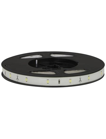 PAULMANN LED-Streifen »YourLED«, 300 cm, tageslichtweiß, 840 lm