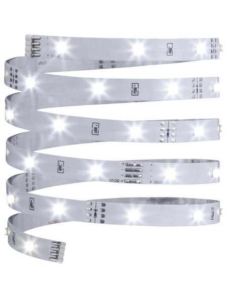 PAULMANN LED-Streifen »YourLED ECO«, 300 cm, neutralweiß, 540 lm, dimmbar