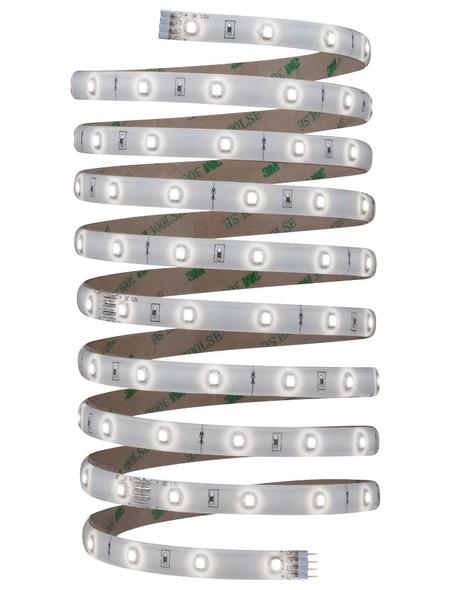 PAULMANN LED-Streifen »YourLED«, Länge: 300 cm, 810 lm