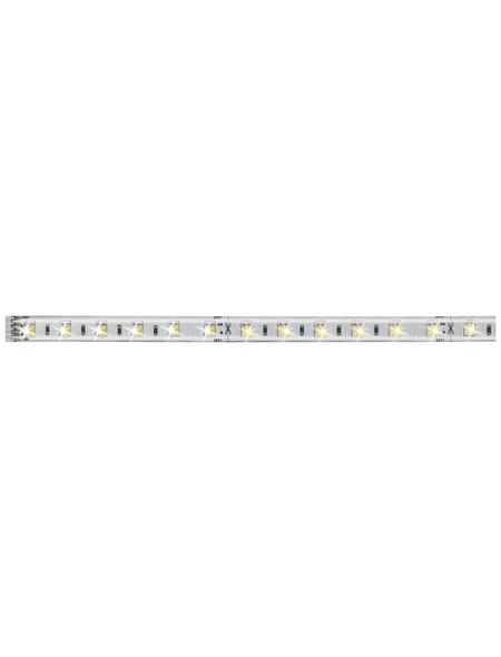 PAULMANN LED-Stripe, Länge: 100 cm, 550 lm