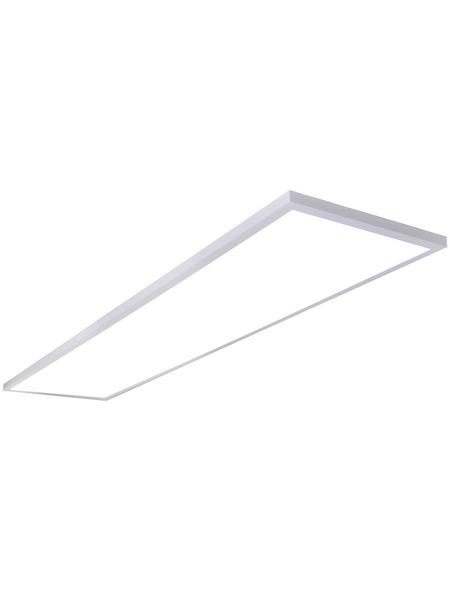 NÄVE LED-Wand-/Deckenleuchte »Carmo«, dimmbar, inkl. Leuchtmittel in kaltweiß/warmweiß