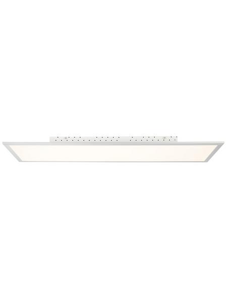 BRILLIANT LED-Wand-/Deckenleuchte »Flat«, dimmbar, inkl. Leuchtmittel , warmweiß bis kaltweiß einstellbar