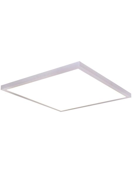 NÄVE LED-Wand-/Deckenleuchte »Pontal«, dimmbar, inkl. Leuchtmittel in warmweiss/kaltweiss