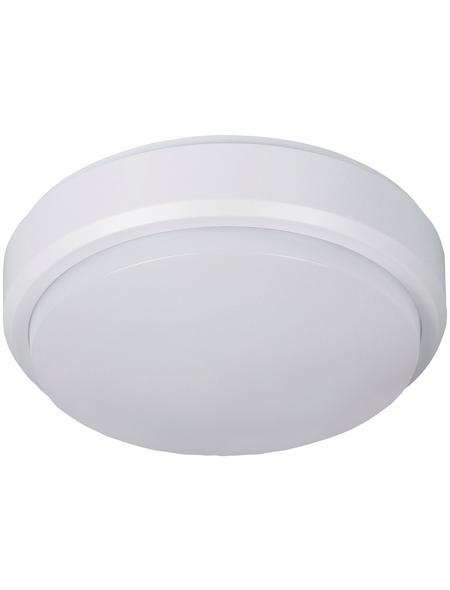 MÜLLER LICHT LED-Wand- und Deckenleuchte »Bulkhead«, 8 W