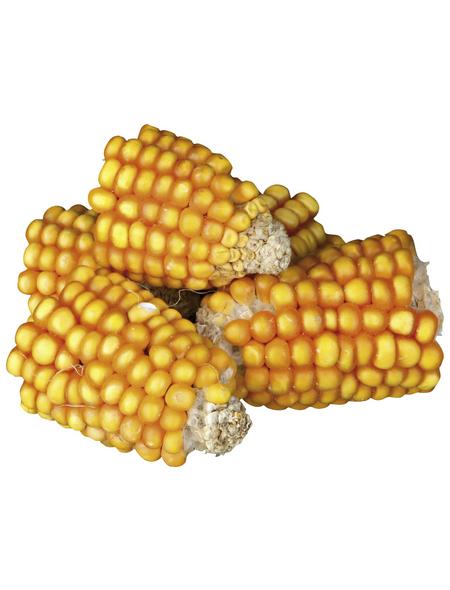TRIXIE Maiskolben-Snack »Pure Nature«, für Nagetiere, Mais