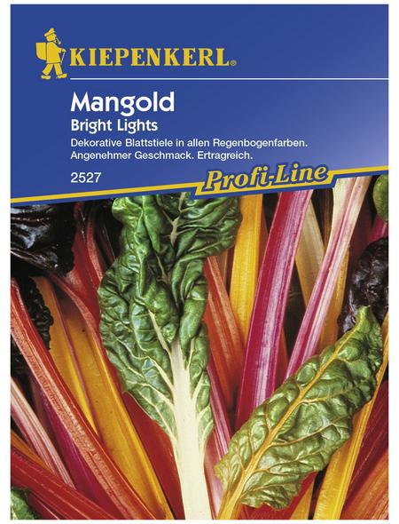 KIEPENKERL Mangold vulgaris var. vulgaris Beta
