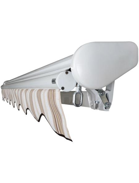 SPETTMANN Markise BxT: 300x250 cm, Weiß