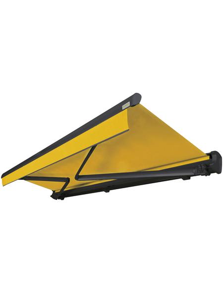 SPETTMANN Markise, BxT: 500x300 cm, gelb