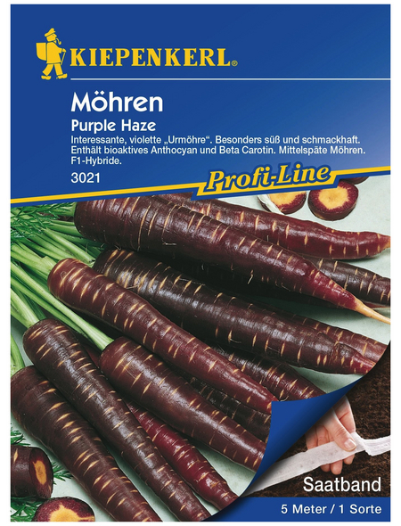 KIEPENKERL Möhre carota ssp. sativus Daucus »Purple Haze«