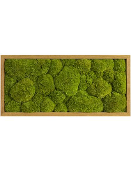 Moosbild Eichenrahmen, BxHxT: 27 x 57 x 6 cm, grün