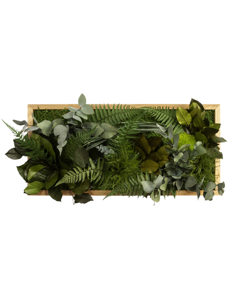 Moosbild Eichenrahmen, BxHxT: 57 x 27 x 8 cm, grün