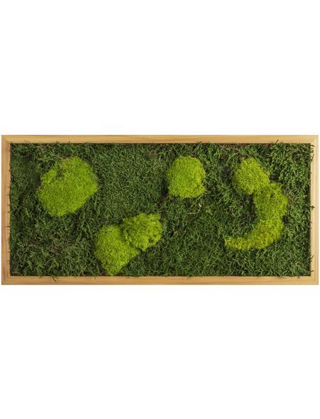 Moosbild Lärchenrahmen, BxHxT: 57 x 27 x 6 cm, grün