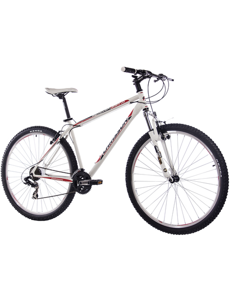 CHRISSON Mountainbike, 29 Zoll