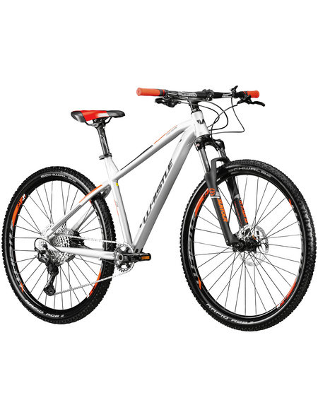 WHISTLE Mountainbike »Patwin 2159«, 29 Zoll, 12-Gang, Unisex