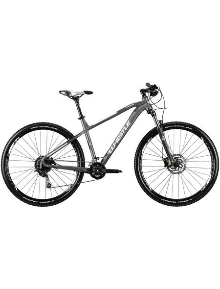 WHISTLE Mountainbike »Patwin 2161«, 29 Zoll, 18-Gang, Unisex