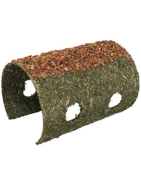 TRIXIE Nager-Snacks, für Nagetiere, Getreide/Karotte