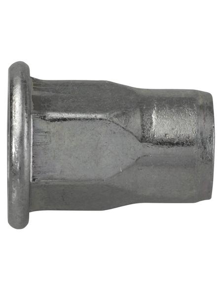 SWG Nietmutter, M6, Silber, Stahl