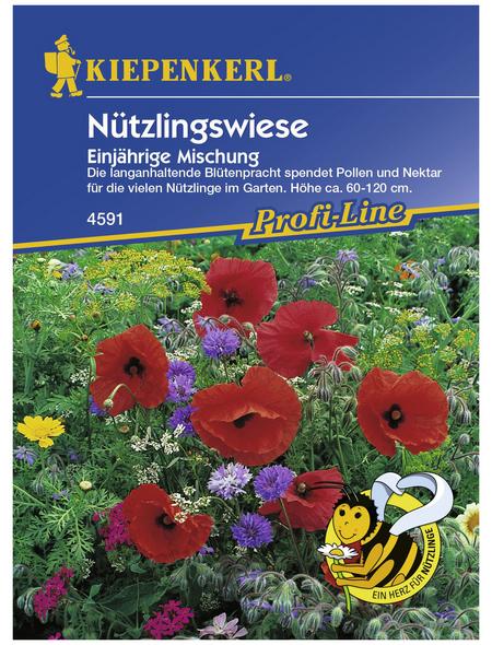 KIEPENKERL Nützlingswiese, Samen, Blüte: mehrfarbig
