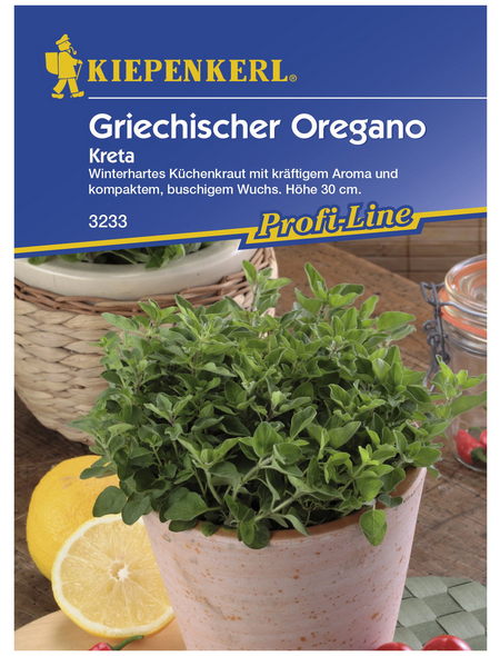 KIEPENKERL Oregano vulgare subsp.vulgare Origanum