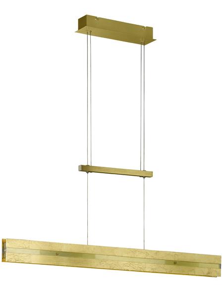 COMPASELECT Pendelleuchte dimmbar, Kunststoff/Aluminium/Metall/Glas