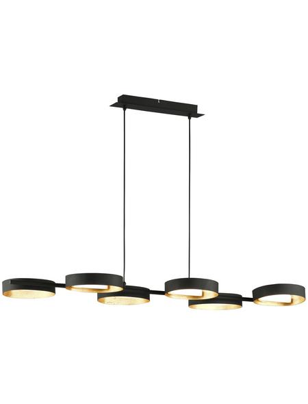 wofi® Pendelleuchte schwarz/goldfarben 26 W, 6-flammig, inkl. Leuchtmittel in warmweiß