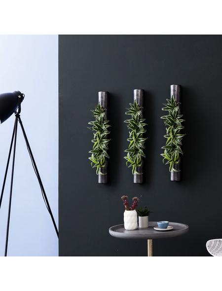 Pflanzen in Keramik 3er-Set bigTube, anthrazit, BxHxT: 65 x 7,5 x 22  cm
