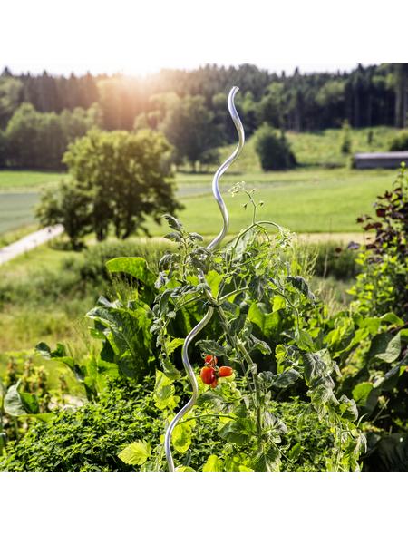 WINDHAGER Pflanzen-Spiralstab, aluminium