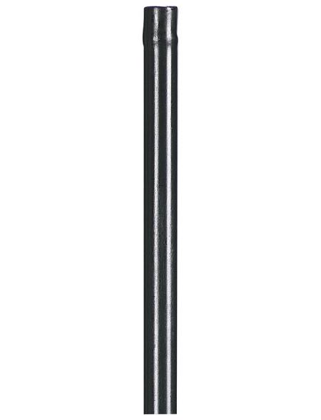 Peacock Pflanzenstütze, ØxH: 11 mm x 120 cm, Stahl